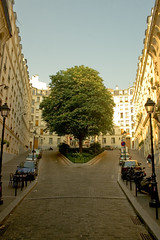 Magritte is back (ole) Tags: street paris france tree europe background magritte symetry explored bestofr noticings
