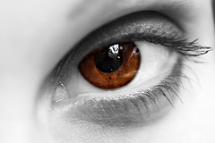 Brown & White (h.andras_xms) Tags: people macro eye canon interestingness highresolution bravo close quality 5d canon5d braun dslr supermacro portre interestingness6 supershot i500 handras flickrelite thisimageisallrightsreservedifyoustealitkarmawillarrivetocollectcod wewantapplehungary wwwxmshu httpxmshu