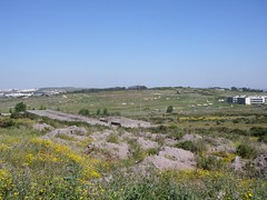 Vista para o campo de golf, a partir do Tagus Park
