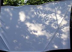 Skyggespil (Die Asta) Tags: berlin gr skygger smuttur skyggespil