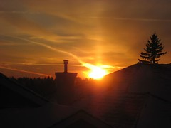 New day approaching (peggyhr) Tags: orange tree yellow sunrise gold edmonton rooflines