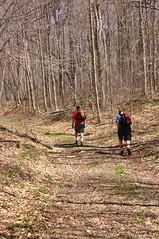 Hiking Towards Huggins Pond