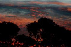 Ethereal 14/5/07 (Allyeska) Tags: pink sunset sky clouds ethereal canberrasunset anawesomeshot flickrdiamond