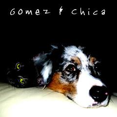 Gomez & Chica