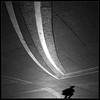 Digital tragedy (Laurent Filoche) Tags: street shadow nikon toulouse placeducapitole bonzography abigfave croixoccitane digitaltragedy streetportfolio