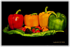 Pepper Medley (Michael Pancier Photography) Tags: stilllife peppers macros jalapeno chilipeppers habanero fineartphotography naturephotography seor lucisart bellpeppers supershot naturephotographer floridaphotographer pancier michaelpancier michaelpancierphotography colorphotoaward scotchbonnett naturemortvivant wwwmichaelpancierphotographycom seorcohiba
