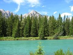 Bow River, Banff (DadOfFlump) Tags: river banff bowriver