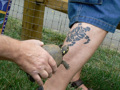 Tribal Turtle Tattoo by ~JK-Antwon on deviantART