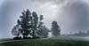 Misty tale (marko.erman) Tags: misty mood moody landscape light sun trees silhouette sony morning cerknica slovenia slovenija lake jezero mist