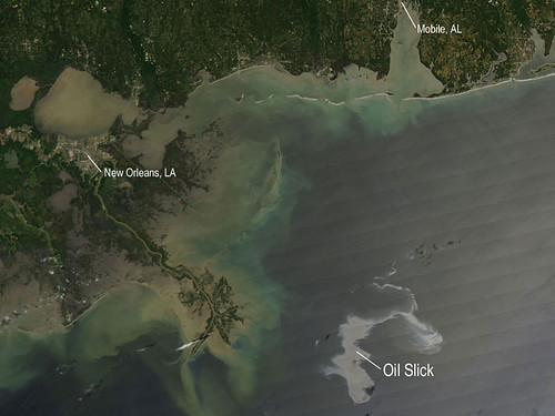 Lousiana Oil Spill by Hopeful in NJ