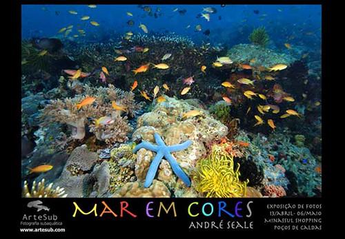 Mar em Cores postcard
