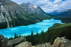 Peyto Lake (Meredith Lewis) Tags: park travel blue summer sky mountain lake canada mountains color colour tree tourism water forest spectacular landscape rockies afternoon cloudy rocky vivid bluesky tourist velvia alberta vista northamerica banff rockymountains wilderness banffnationalpark peytolake peyto velvia50