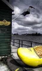 The Big Yellow Clog - by bruckerrlb