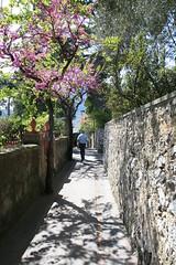 Walkway in Capri Town