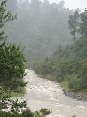 Totara Creek meets the Waiohine River