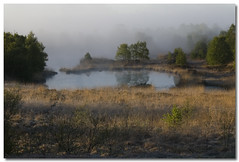 silence (outdoorstudio) Tags: mist lake landscape denmark hush landskab specland abigfave focuslegacy