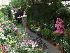 Flower Market (Joe Shlabotnik) Tags: flowers paris france sue 2007 april2007 justsue