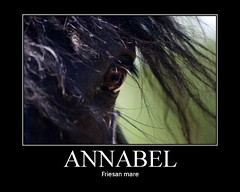 Annabel (neulands) Tags: horse art poster cheval fdsflickrtoys annabel pferde