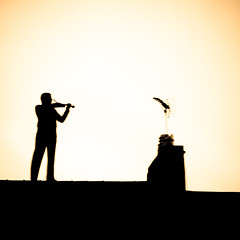 Fiddler On the Roof (Stefan Elf) Tags: roof chimney silhouette sepia contrast square player 101 violin 1735mmf28d coolest soe fiddler questfortherest nikond200 supershot nikkor1735mmf28 abigfave anawesomeshot impressedbeauty superbmasterpiece flickrelite