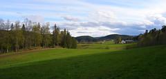 Malvik in May #4 (Krogen) Tags: nature norway landscape norge spring natur norwegen olympus c7070 noruega vår krogen landskap noorwegen noreg trøndelag malvik buaaslia
