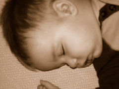 Bennett sleeping - sepia