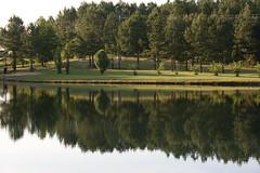 Reflecting..... (shutterbug99) Tags: sky lake reflection tree water pond treeline searchandreward
