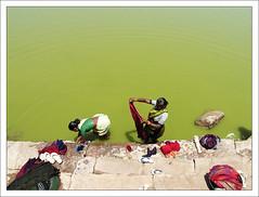 Hard Work (Christian Lagat) Tags: woman india green work geotagged women femme laundry karnataka indianarchive grdigital inde badami भारत ricohgrd anawesomeshot 50millionmissing nginationalgeographicbyitalianpeople