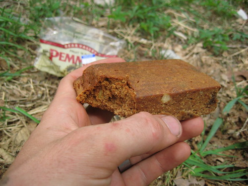 Ben & Lauren's Adventure Journal: Pemmican Bars Revisited