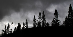 low light (robbyuk1) Tags: uk sunset sky blackandwhite mountain seascape nature water beautiful animal canon river landscape scotland waterfall highlands scenery stag ben country north scenic scene farmland glen deer hills burn glencoe loch grassland picturesque hdr inverness fortwilliam robroy nevis moorland beutiful burnley lochy davidrobinson scottishhighlands ldr linnhe locharkaig arcaig fortwilliamscotlandscottishhighlandsglen rivercaig robbyuk