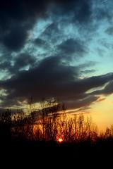 Twilight 4 - Heaven Is A Place On Earth... . (Ewciak & Leto) Tags: sunset sky nature clouds twilight 500v20f dream romantic emotions canoneos350d thesource 250v10f v401500 v101200 v76100 v501600 v601700 v701800 v201300 v301400 v801900 diamondclassphotographer flickrdiamond blackribbonbeauty amazingamateur excellentphotographerawards v9011000 v10001250 brillianteyejewel