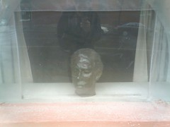 head in window