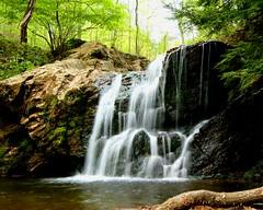 Cascade Falls (Cayusa) Tags: statepark favorite waterfall favorites maryland cascades myfavorites baltimorecounty cwd week16 patapscovalleystatepark interestingness54 explored i500 tacwd cwdgs takeaclasswithdavedave cwdexplore cwd161 cwdweek16 explore29apr07 myfavorites3 cwdgs16 brooksncreeks