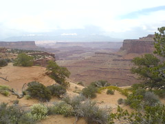 Day7b - Canyonlands Photo