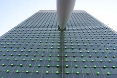 minimal Rotterdam