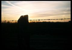 Smena Sunset