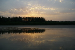 Morning ! (unixdoc) Tags: morning sun reflection beach nature beauty sunrise reflect konkan kokan