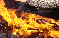 Flame (Alexey Rogozhin) Tags: russia flame sonydsch5