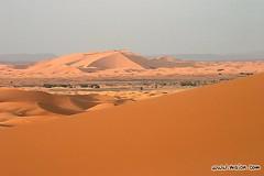 la gende dunes de merzouga  hassi  labied (rachid_costa_delsol) Tags: les merzouga hassi labied maro0661sanddunedesertexpansesandmajesticmorningvastspaceopendistancebreadthendlessdistantmagnificentdesertdryaridshapeharmonybalancelanddesolatebarreninhospitabledesolationwildernessruggedremotei flamentsroses