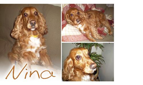 Nina, linda!