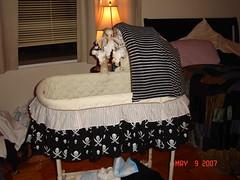 bassinette1