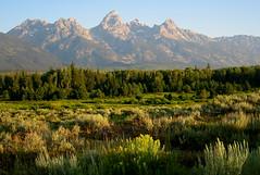 Early Morning Teton Sun (Jeff Clow) Tags: morning mountains nature landscape bravo searchthebest grandtetonnationalpark specnature speclandscape mywinners anawesomeshot impressedbeauty copyrightedbyjeffrclowallrightsreservednounauthorizedusageallowed