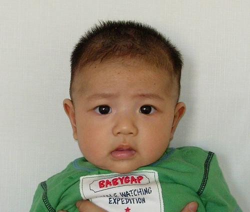 宝贝三个半月证件照