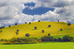 Andalusia Landscapes 2 (Maciej - landscape.lu) Tags: blue trees sun green blanco colors yellow clouds photography spain bravo gallery village searchthebest pueblo fine andalusia blanc breathtaking 2007 andalousie fiels elbosque the peopleschoice naturesfinest blueribbonwinner flickrsbest of andaluzja abigfave anawesomeshot superaplus aplusphoto goldenphotographer megashot ccctd platinumheartaward thechallengegame challengegamewinner world100f thegalleryoffinephotography