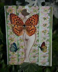 ATC, Jezebel Faerie Five, Traded (Burning*Midnight*Oil) Tags: flowers artisttradingcards atcs starlight vintageseries jezebelfaeries