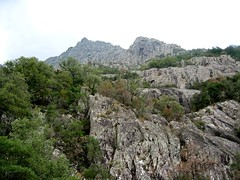 Sentier RG de la Cavicchia : vers le Pinzu Scaffone
