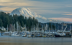 Gig Harbor and Rainier (Daniel P Froese) Tags: marina boats yachts puget sound pugetsound mount mountain rainier mountrainier washington washingtonstate picture pictures image images photo photos dusk sunset water snow