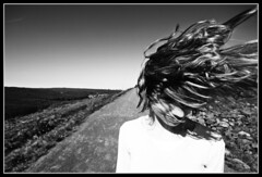 Wind Path (bw) (hannes.trapp) Tags: sky bw anna woman sun girl canon hair way eos hannes model path himmel sw shooting schwarzweis sonne weg saar saarland haare trapp haar fischbach slagheap modelshoot terril halde sigma1020 instantfave 400d hannestrapp