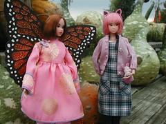 Halloween 2004 (ava111sk/Dollypimp) Tags: fall halloween japan pumpkin toy costume outfit doll collectible volks nadiff momoko wtg happybox petworks 04hb 04nf