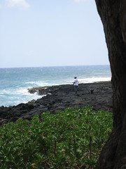 Last Day on Kauai (8) (gar&sar) Tags: ocean beach fisherman kauaihawaiivacation