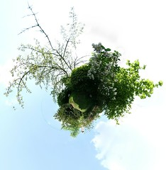 My Springtime Planet (Man) Tags: trees panorama france flower grass garden spring blossom 360 full explore handheld 360x180 spherical planetoid hugin enblend interestingness485 i500 littleplanet manuperez planetoids